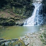 Hareshaw Linn a great walk out