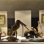 Musee d'Allard