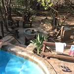 Enjoying the private pool after a day of safari... And the safari continues at home!