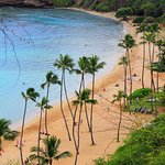 Discover Hawaii Tours