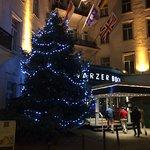 Exterior Christmas tree.