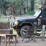 Wildlife Camp campsite area