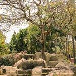 Jardin de la Abundancia