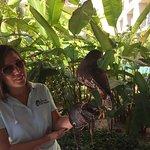Now Amber Puerto Vallarta Foto