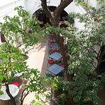 Welcome to Hotel De L'Orient - a Neemrana property. Looking down at the Carte Blanche restaurant