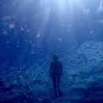 Foto di Palolo Deep Marine Reserve