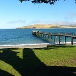 Looking across Hokianga Harbour