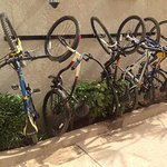 Their great mountain bikes!