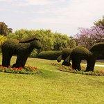 Photo de Hunter Valley Gardens