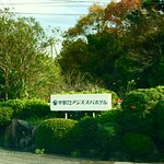 Photo de 1567259