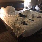No room service for four days