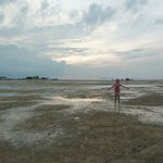 super low tide in the early morning