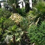 Jardin Botanico La Almunya del Sur