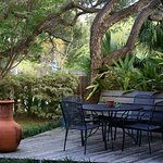 Enjoy the view of Anthony's backyard garden while eating a gourmet breakfast and coffee.