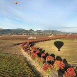 Foto de Napa Valley Balloons, Inc.