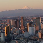 Tokyo and Mt. Fuji in the distance
