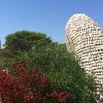 Royal Botanic Gardens Foto