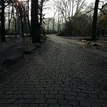 Novotel Berlin Am Tiergarten Foto