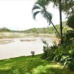 Naledi Bushcamp and Enkoveni Camp-bild