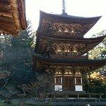 Saimyo-ji Temple Photo