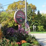 The Wild Tomato in Sister Bay