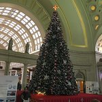 The Christmas Tree in Union Station, 2016