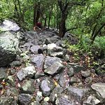 Lots of rocks and steep descent / ascent on Gros Piton