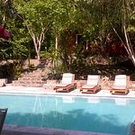 Alberca - Swimming pool