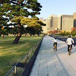 Imperial Palace gardens on hotel provided bikes