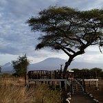 Kilimanjaro viewing platform