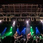 The Sprit of Suwannee- Live Oak
