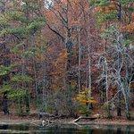 Sope Creek Trail