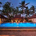 Maui Palms