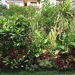 Foto de Pangkung Sari Guesthouse