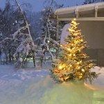 Thomson Lapland Experience at Hotel Hetta