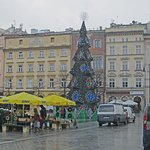Christmas tree on the square