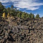 The Lava Trail
