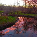 Sunset reflected on Elm Creek