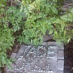Decorative Stepping stone off to side of restaurant front...