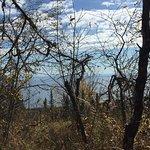 Moose Mountain Vista