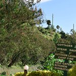 Bunyonyi Safaris Resort
