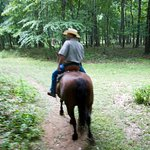 Horseback Riding Trail RIdes