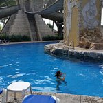 Alligator pool slides