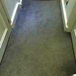 carpet full of spots