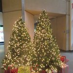 Christmas Trees, Grand Hyatt, San Francisco, CA