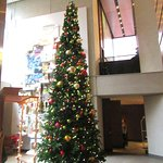 Christmas Tree, Grand Hyatt, San Francisco, CA