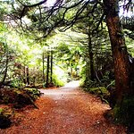 Path to the campsites