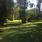 Bellos y bien cuidados jardines !!!