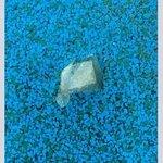 Dolphin Heads Resort Foto