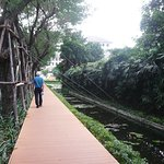 Pedestrian walkway runs along canal and long driveway